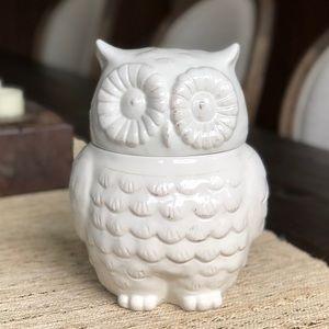 Better Homes & Gardens Ivory Figure Owl Decor